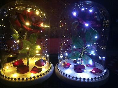 Large VALENTINE Beauty & The Beast Inspired 'ENCHANTED ROSE' GLASS LIGHT DOME