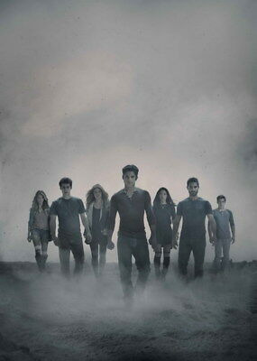 "029 Teen Wolf - MTV Blood Action Thriller TV Show 14""x19"" Poster"