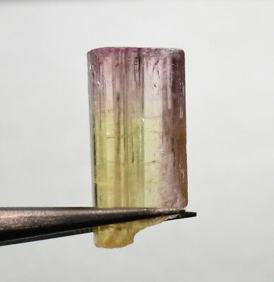 Tourmaline bicolore terminée 10,34 carats  Natural terminated bicolor tourmaline