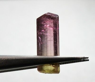 Tourmaline bicolore terminée 6,28 carats  Natural terminated bicolor tourmaline
