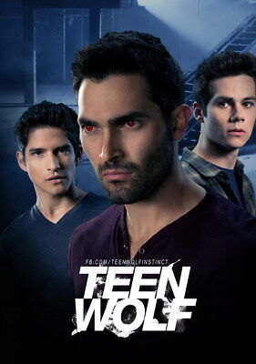 "042 Teen Wolf - MTV Blood Action Thriller TV Show 14""x19"" Poster"