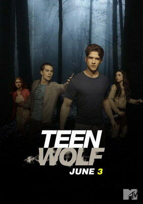 "046 Teen Wolf - MTV Blood Action Thriller TV Show 14""x19"" Poster"