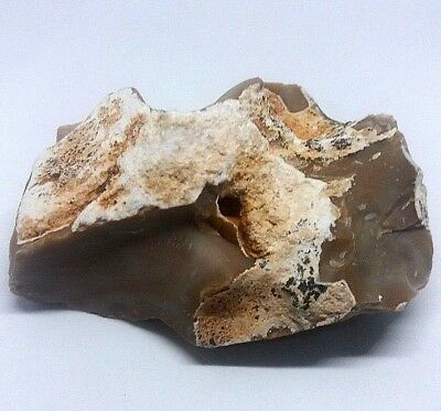 234 gr Small Rock HOLY LAND Natural Stone of JERUSALEM Ancient Mountain Secrets
