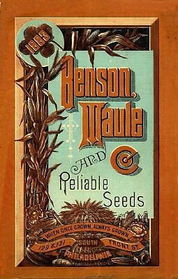 Benson Collection Vintage Fruits Seed Packet Catalogue Advertisement Poster 1