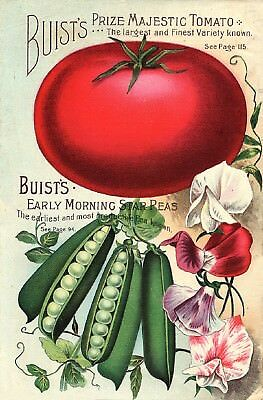 Buist Collection Vintage Fruit Seeds Packet Catalogue Advertisement Poster 2