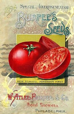 Burpee Collection Vintage Fruit Seeds Packet Catalogue Advertisement Poster 13