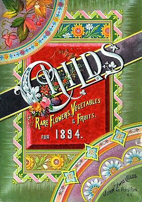 Childs Collection Vintage Fruit Seeds Packet Catalogue Advertisement Poster 7