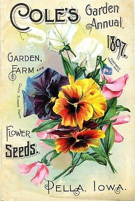 Coles Collection Vintage Fruit Seeds Packet Catalogue Advertisement Poster 4