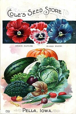 Coles Collection Vintage Fruit Seeds Packet Catalogue Advertisement Poster 6
