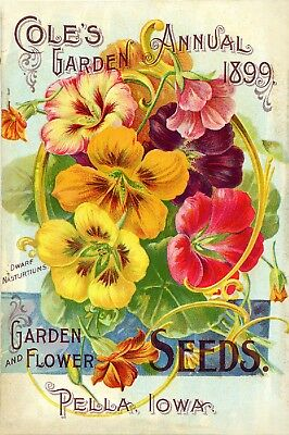 Coles Collection Vintage Fruit Seeds Packet Catalogue Advertisement Poster 7