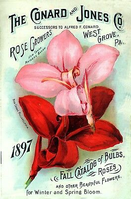 Conard Collection Vintage Fruit Seeds Packet Catalogue Advertisement Poster 4