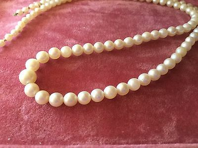 String of Antique Vintage Genuine Salt Water Pearls 42 cm long Saltwater Pearl