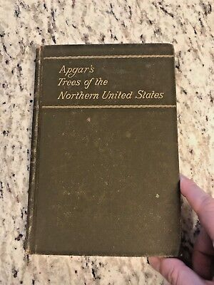 "1892 Antique Science Reference Book ""Trees of the Northern United States"""