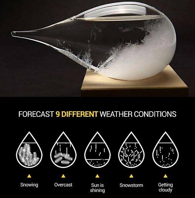 Weather Predicting Storm Glass Set Ornament Display Globe Drop with Stand Large