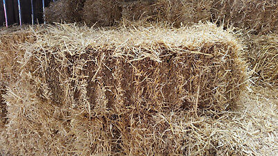 Straw Bale - Animal Feed & Bedding - Ideal for Horses and other pets