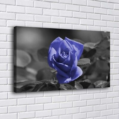 """12""""x22""""Purple Rose Painting HD Print on Canvas Home Decor Room Wall Art Picture"""