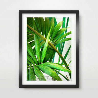 GREEN TROPICAL PALM TREE LEAVES ART PRINT Poster Home Decor Foilage A4 A3 A2