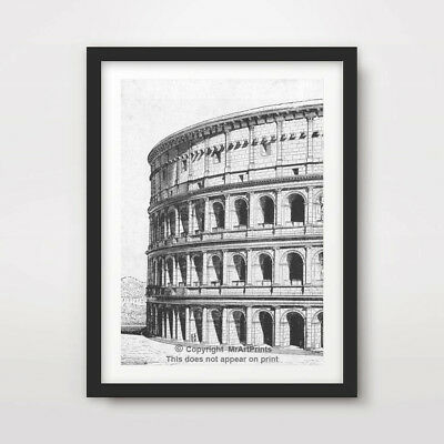 ROME COLOSSEUM ARCHITECTURAL DIAGRAM ART PRINT Poster Home Decor Wall Picture