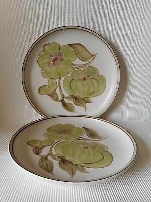 TWO DENBY TROUBADOUR 255mm DINNER PLATES