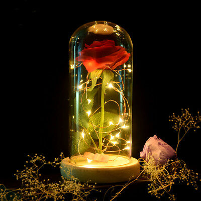 Beauty and the Beast Rose Lamp with Fallen Petals in a Glass Dome on a Wooden