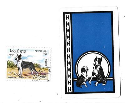VINTAGE BOSTON TERRIER DOG PLAYING CARD & STAMP LOT Of 2 *