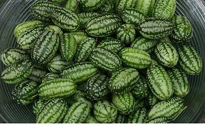 Vegetable - Cucamelon - 10 Seeds - Economy #1688