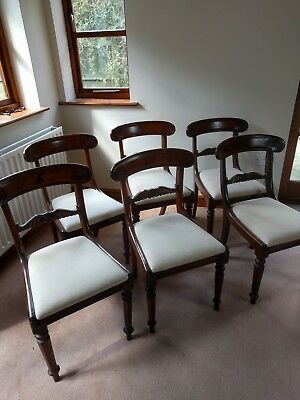 Set Six Mahogany William iv Dining Chairs
