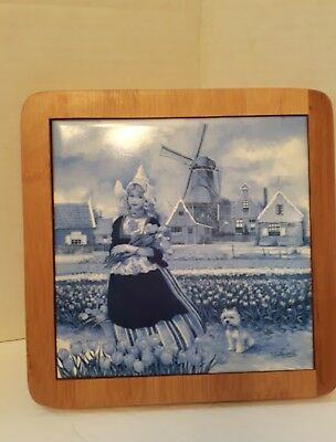 Hand Decorated Ter Steege Blue White Delftware Holland Windmill Wood Framed Tile