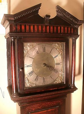 "Antique Oak  "" Wellington  ""  Brass Dial   Longcase / Grandfather Clock"
