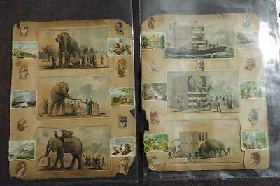 Antique Victorian Scrap book pages 1870 Jumbo Elephant Trade Card Amer. Series