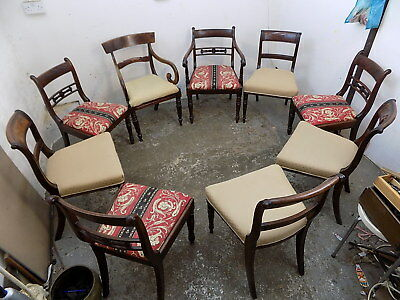 georgian,dining chairs,padded seats,chairs,carvers,harlequin set,nine,antique