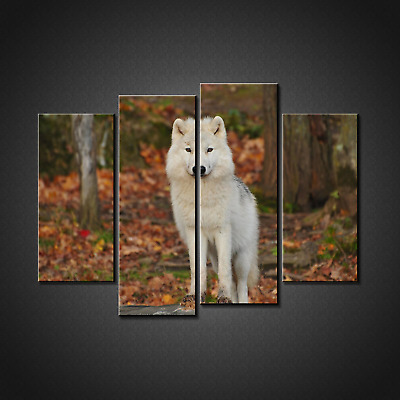 White Wolf Canvas Print Picture Wall Art Home Decor Free P&P