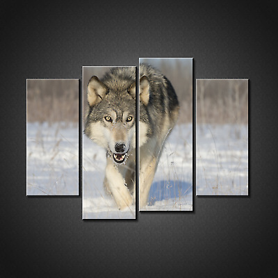 White Wolf Canvas Print Picture Wall Art Home Decor Free Fast Delivery