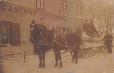 Innsburck Austria Horse Sleigh Logging Real Photo Antique Postcard J76425