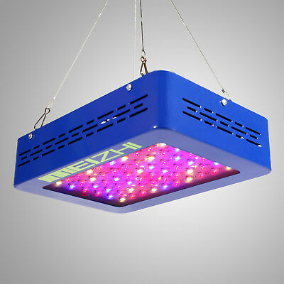 MEIZHI Mr 300W LED Grow Light Full Spectrum Hydroponics Medical Plant Veg Bloom