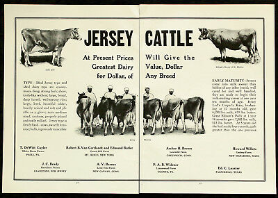 1915 JERSEY DAIRY COWS Farm Cattle Sale 2-Page PHOTO Vtg Agriculture PRINT AD