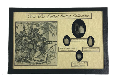 Original Civil War Pulled Bullets with Barrel Screw in Glass Topped Display Case