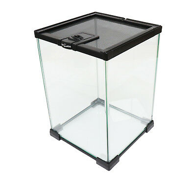 Nano Habitat Terrarium Spider Insect Frog - Glass, Stackable - 21 x 21 x 30cm