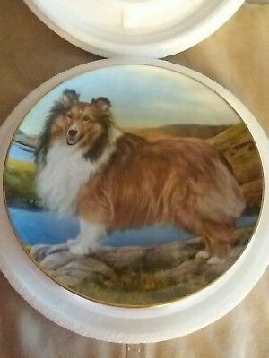 Danbury Mint Shetland Sheepdog SHELTIE SUMMER OUTING Plate Edward Aldrich