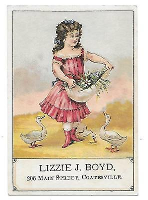 Lizzie J. Boyd Victorian Trade Card Coatesville Pa.