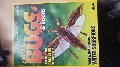 real life bugs and insects magazine