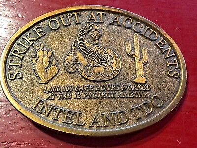 Intel and TDC Strike Out at Accidents Snake Solid Brass Belt Buckle Safety