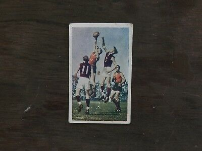 Wafl Football Vintage Ava Confections Cigarette Card
