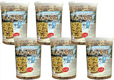 6 Pack, Pine Tree Farms Classic Nutsie Seed Log 80oz 8004 Made in USA