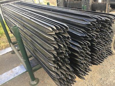 Black Star Picket Heavy Duty 2400mm Value Pack 10pcs