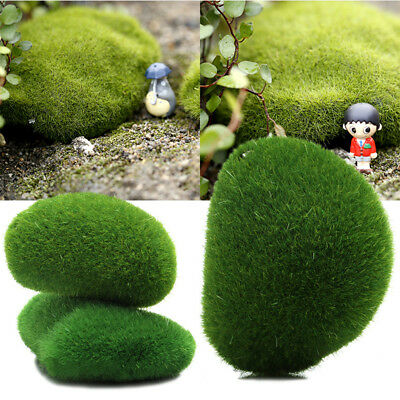 Moss Pebble Pack VERDE Decorazione Acquario Fish Tank