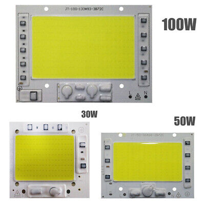 30W 50W 100W AC 220V LED Chip COB Smart IC Nessun Driver Integrato Floodlight