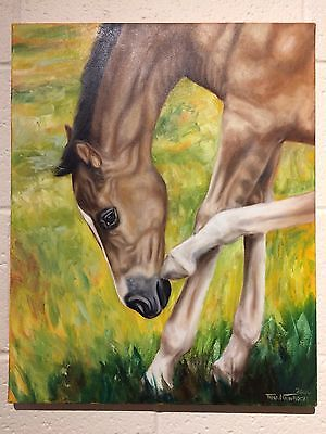 TINA NAWROCKI Animation Horse Painting, original, signed & Dated by the artist