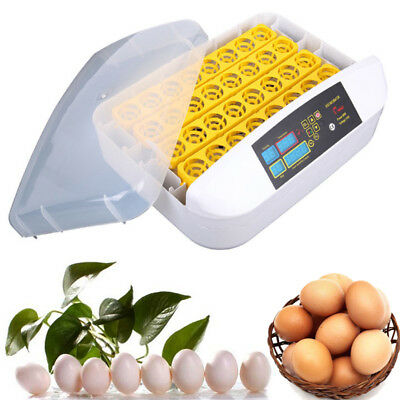 32 Eggs Practical Fully Automatic Poultry Incubator with Egg Turning Incubator