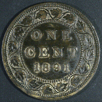 1891 Canada Large cent - Large Date - Large Leaves - Nice Coin